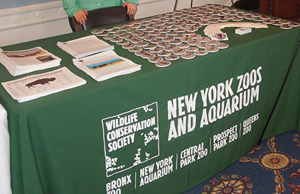 The Wildlife Conservation Society hosted the first-annual National Bison Day celebration in Washington, DC, which had over 200 attendees. (Nov. 2012) <b>&copy;WCS</b>